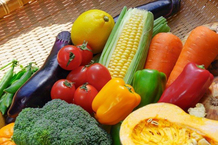 野菜(740).jpg